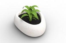 Chậu trồng cây kiểu dáng lạ chất liệu composite giả đá cao cấp